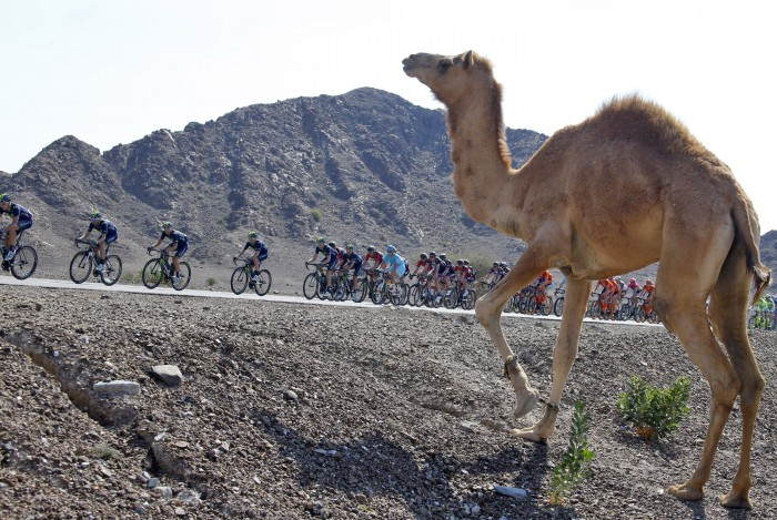There are some sights at the Dubai Tour that the pro riders won't see at any other race on the calendar.