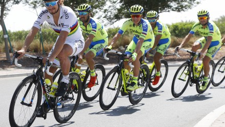 Abu Dhabi Tour 2015 - 06/10/2015 - Peter Sagan (Tinkoff - Saxo) - foto Roberto Bettini/BettiniPhoto©2015