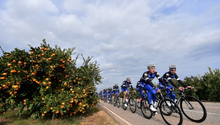 Cycling: Team Etixx Quick-Step 2016 KITTEL Marcel (GER)/ MARTIN Tony (GER)/ Illustration Illustratie / Peleton Peloton / Oranges Sinaasappels / Landscape Paysage Landschap / Equipe Ploeg /(c)Tim De Waele
