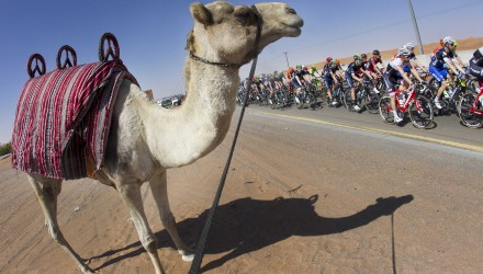 The pack is on the way of the third stage of the 2016 Dubai Tour cycling race over 172km from Dubai to Hatta Dam, United Arab Emirates, 05 February 2016. ANSA/CLAUDIO PERI