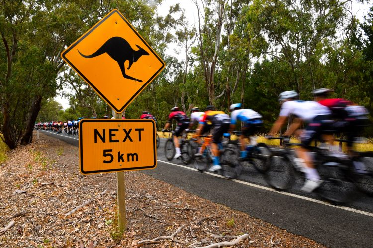 2020 Tour Down Under Stage 4 Results and Recap | Road Bike Action