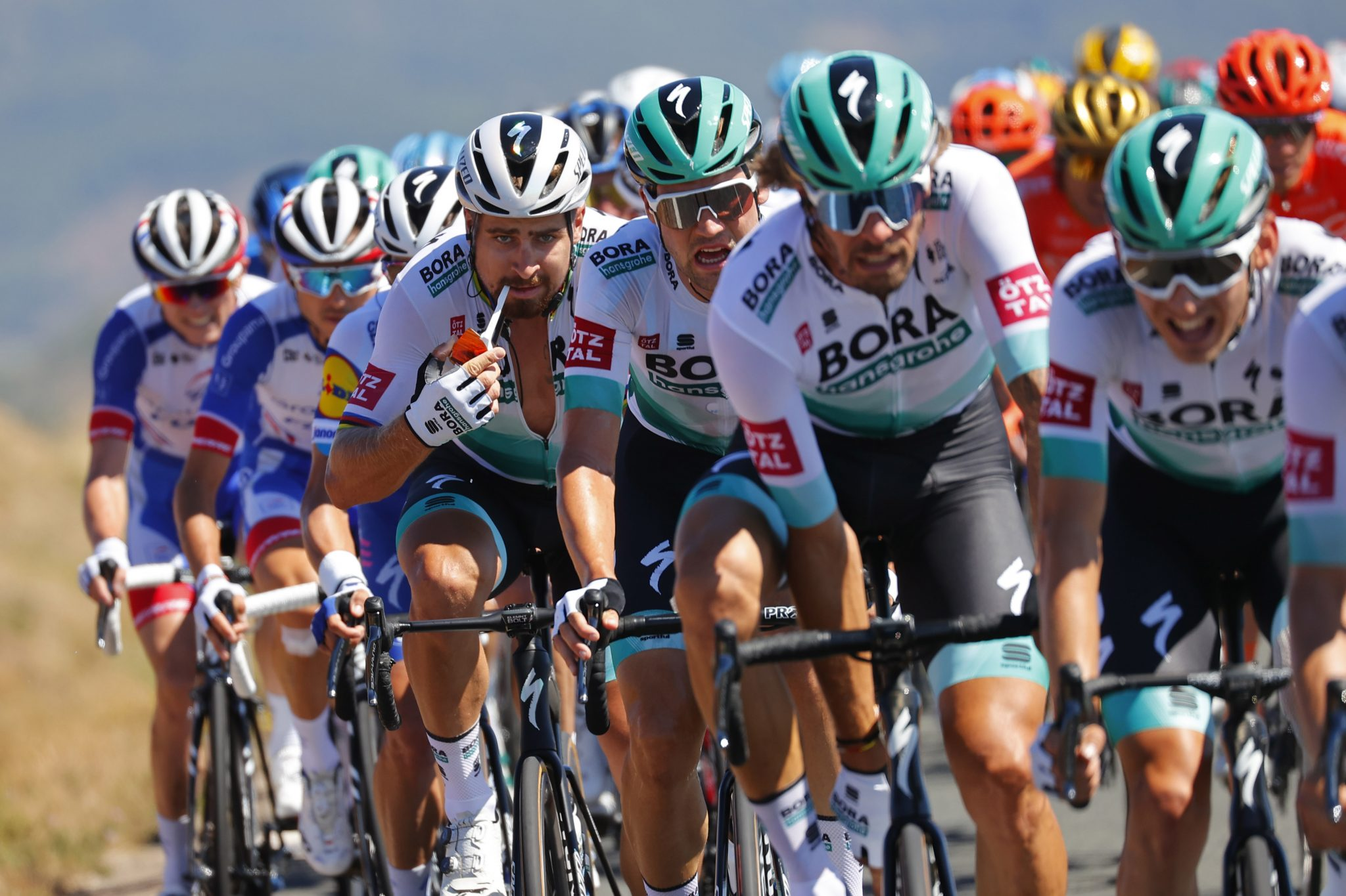 SEVEN BORA-HANSGROHE RIDERS INVOVLED IN TRAINING CRASH WITH CAR | Road Bike Action