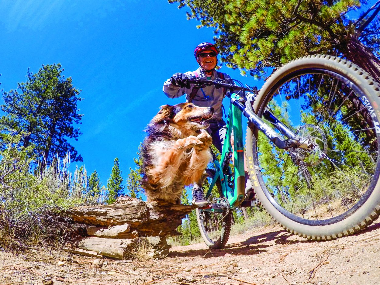 WATCH WHY WE ENVY MOUNTAIN BIKERS